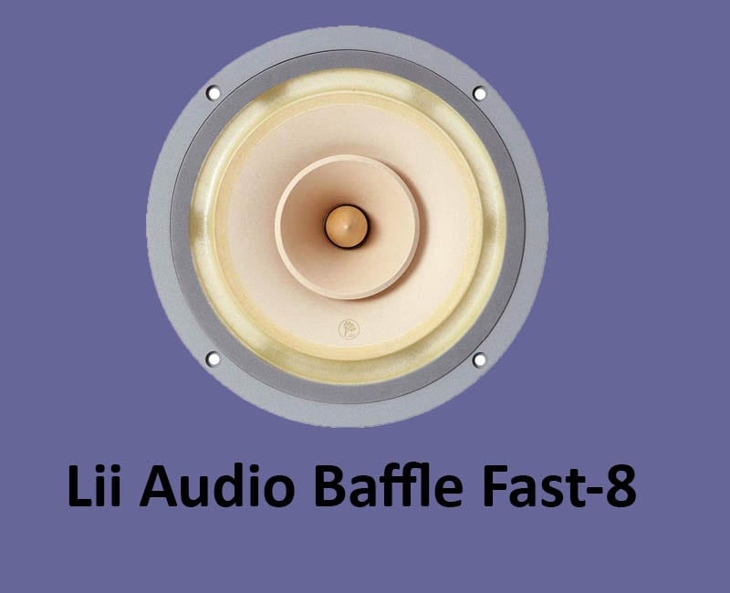 Overall Best Lii Audio 8 Inch Full Range Drivers